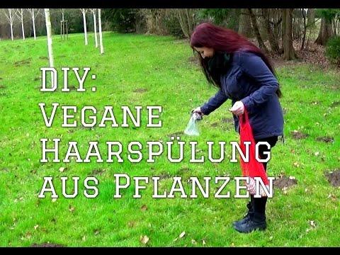 Vegane Haarspülung aus Gänseblümchen, Birke und Brennnessel (DIY)