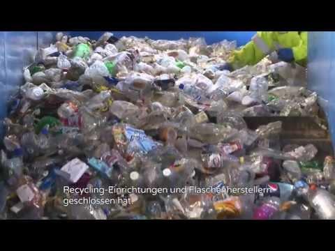 Ecover Ocean Plastic - saubere Meere, sauberes Essen, sauberes Geschirr