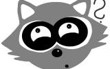 raccoon question weiss