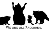 we are all raccoons body positive vegan thumbnail