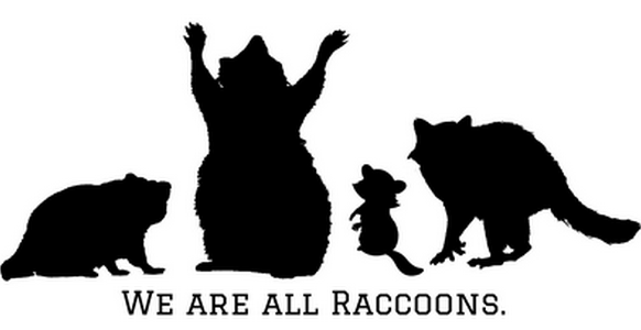 we are all raccoons body positive vegan thumbnail