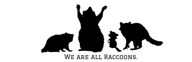 we are all raccoons body positive vegan