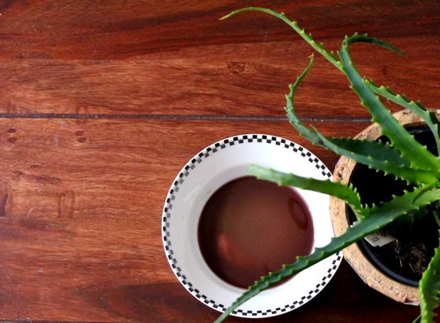 blut maske halloween diy handmade aloe beauty vegan do it yourself wein vine blood of 100 virgins Aloe arborescens
