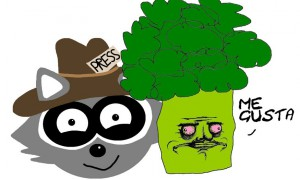 waschbär und me gusta brokkoli