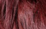 haare no poo aufguss kräuter sammeln wildkräuter buchtipp vegan kosmetik natürlich haare waschen haarpflege spülung dark red hair rote haare