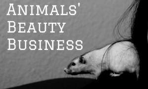 animals beauty business waschbärenreport vegan tierversuche kosmetik