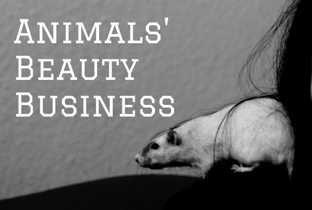 animals beauty business waschbärenreport vegan tierversuche kosmetik