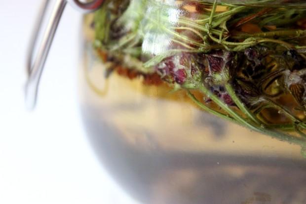 Haarkräuter Juli kosmetik vegan Haare Kräuter Pflanzen Lavendel Rinse Spülung Lavender Gesichtswasser Toner diy selbstgemacht 2