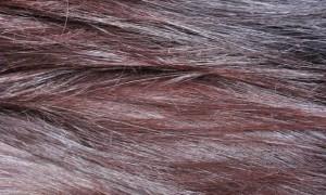Radico Violett indigo henna anwendung tipp tricks vegan kosmetik pflanzen haare farbe lila schwarz längenbild
