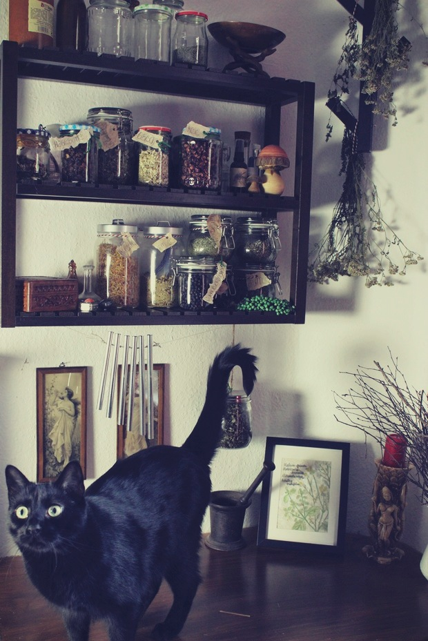 Kräuterecke witch hexe Kräuter vegan Kosmetik witchy beauty business herbs black cat schwarze katze jugendstil (4)