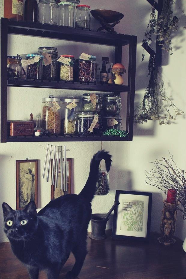 Kräuterecke witch hexe Kräuter vegan Kosmetik witchy beauty business herbs black cat schwarze katze jugendstil (4)