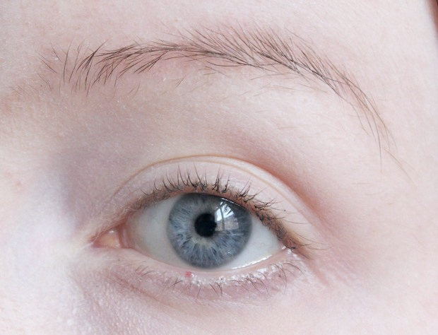 eyebrows on fleek Augenbrauen auffüllen vegan kosmetik tierversuchsfrei real techniques alverde lunatick cosmetic labs terra naturi Naturkosmetik 1