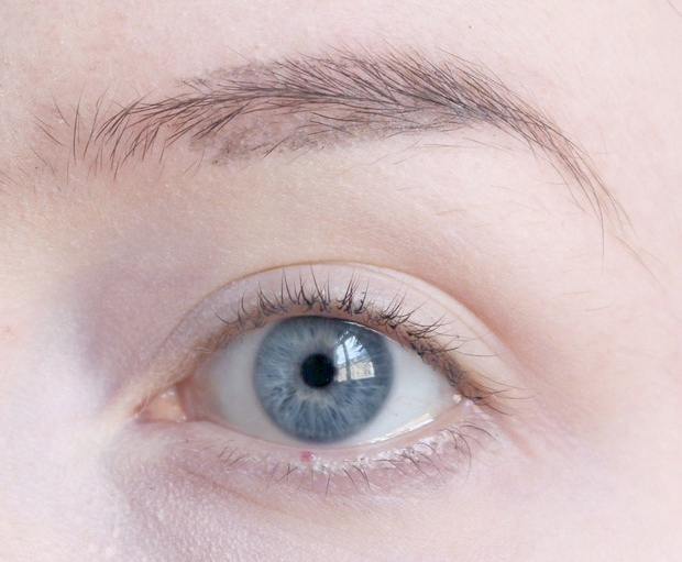 eyebrows on fleek Augenbrauen auffüllen vegan kosmetik tierversuchsfrei real techniques alverde lunatick cosmetic labs terra naturi Naturkosmetik 2