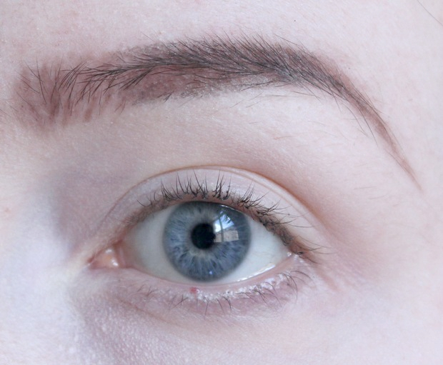 eyebrows on fleek Augenbrauen auffüllen vegan kosmetik tierversuchsfrei real techniques alverde lunatick cosmetic labs terra naturi Naturkosmetik 4