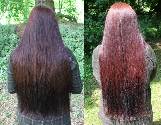 Blanc et Noir Erbse vegan kosmetik lange Haare Haarbande Waschbär henna