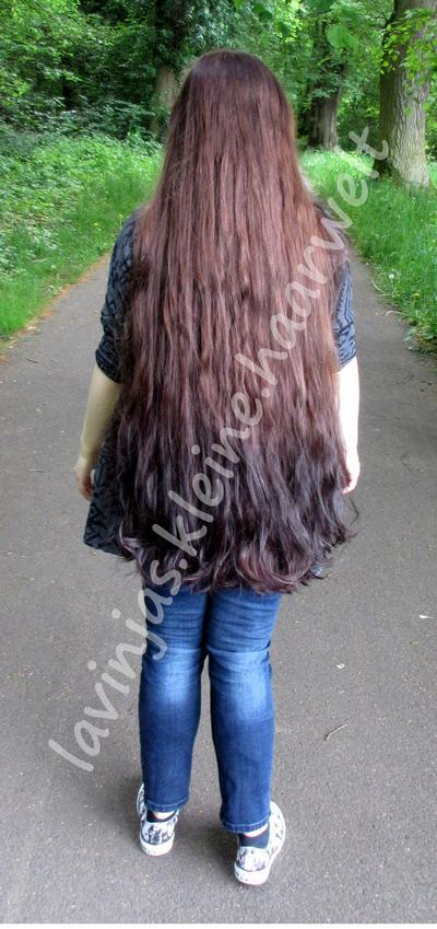 Lavinjas kleine Haarwelt