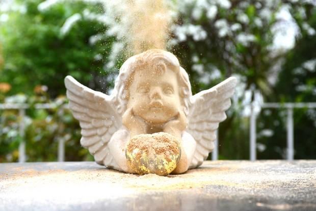 karin hunkel angel minerals anna animals + nature interview vegan erbse naturkosmetik (8)