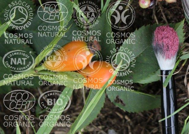 cosmos label naturkosmetik richtlinien regularien vorgaben vegan tierversuche soil bdih ecocert icea organic bio