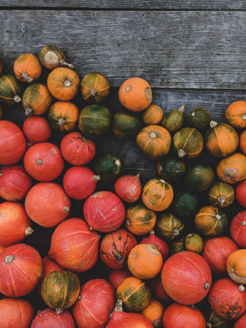 witch bottle halloween samhain hexe hexenflasche magie diy vegan neujahr wünsche kürbis allerheiligen natur herbst autumn (5)