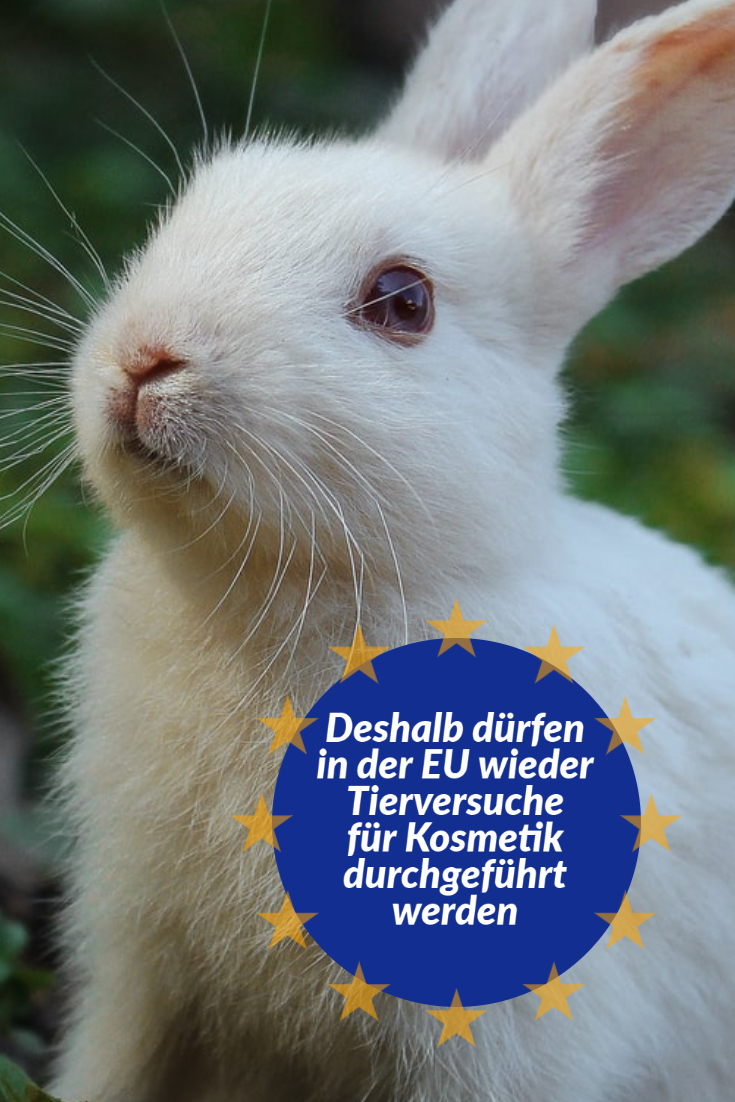EU Europa Tierversuche animal testing reach symrise echa kosmetik cruelty free